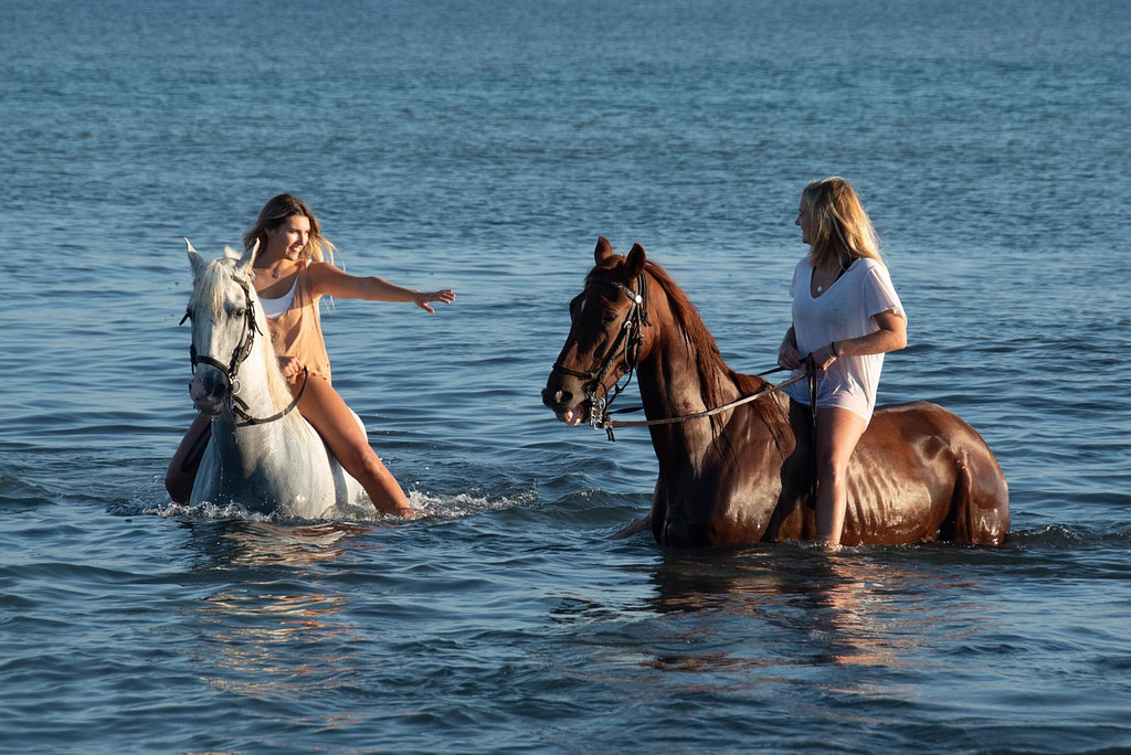 horse back riding Mallorca
